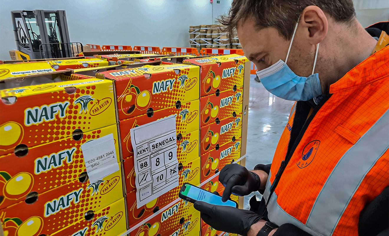 Brucargo optimises perishables facilities